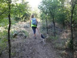 Knob Hill Trail 7 20 13 – Pierce Wanderings