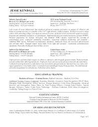 Federal Resume Cover Letter Example Government Examples Stunning Job