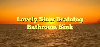 Slow Draining Bathroom Sink Remedy by Lovely Slow Draining Bathroom Sink Proinformatix