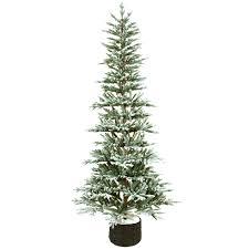D22 75ft Unlit Vouvant Organic Christmas Tree