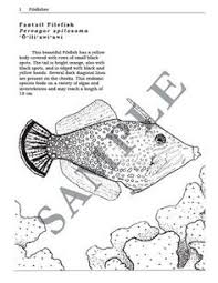 MARINE BIOLOGY COLORING TEXTBOOK Coloring Pages By Lucid Publishing