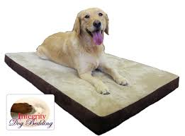 Serta Orthopedic Dog Bed by Get An Orthopedic Dog Bed To Soothe Your Dog U0027s Aching Joints