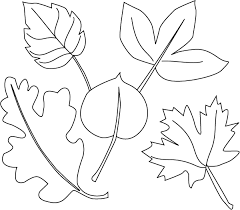 Different Leaves Coloring Pages Within