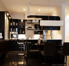 Sophisticated Kitchens Modern Black Kitchen Cabinets 2