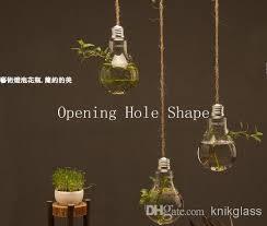 lightbulb shaped glass terrariums indoor hanging planter moss or