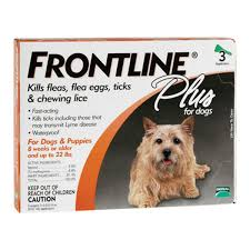 Deer Ticks On Christmas Trees by Frontline Plus Flea And Tick Control Medicine For Dogs