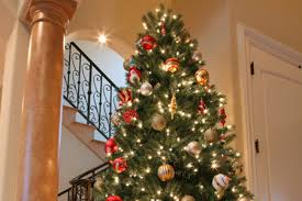 Fraser Christmas Tree Care by How To Care For A Christmas Tree Diy True Value Projects