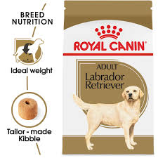 Royal Canin Breed Health Nutrition Labrador Retriever Adult Dry Dog Food |  Petflow Kauffman Tire Newnan Ga Childrens Place Promo Codes Coupons Ka Code Ticketmaster Disney On Ice Kidzania Dubai Ava Fertility Discount Uk Logo Infusion Coupon My My Airtel App Sand Canyon Barber Petflow Hashtag Twitter Petcarerx 20 Save With Verified Petco Coupons Promo Codes Cats Coupon Discounts And Promos Wethriftcom Shopping Make Up Deals Posts 5 Star Gainesville 25 Off First Autoship Order Petflow Coding