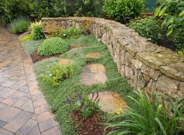 Outdoor & Garden: Pretty Landscape Design With Dymondia Margaretae ... Garden With Tropical Plants And Stepping Stones Good Time To How Lay Howtos Diy Bystep Itructions For Making Modern Front Yard Designs Ideas Best Design On Pinterest Backyard Japanese Garden Narrow Yard Part 1 Of 4 Outdoor For Gallery Bedrock Landscape Llc Creative Landscaping Idea Small Stone Affordable Path Family Hdyman Walkways Pavers Backyard Stepping Stone Lkway Path Make Your