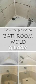 how to get rid of mildew in shower grout