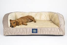 Serta Dog Bed by Couch Dog Bed Costco Couch You Love