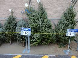 Unlit Artificial Christmas Trees Walmart by Christmas Beautiful Christmas Trees At Walmart Fresh Christmas
