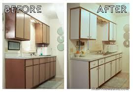 1 Bedroom Apartment Kitchen Decorating
