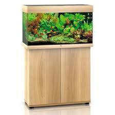 aquarium poisson prix aquariums et terrariums les meilleurs prix sur poisson d or