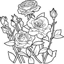 Printable Flower Garden Coloring Pages Free Power Simple