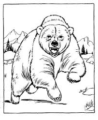 Bear Coloring Pages Picture Printable Zoo Animals