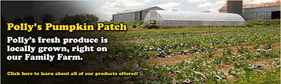 Pumpkin Patch Near Green Bay Wi by Pollys Pumpkin Patch