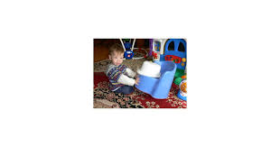 Potty Training Chairs For Toddlers by Should You Potty Train With A Toilet Insert Or A Potty Chair
