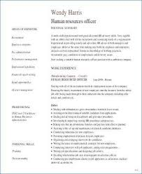 Resume Format For Store Manager Enchanting Sample Lovely Retail Sales Best
