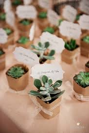 Rustic Wedding Theme Succulent Favors And Place Cards