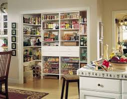 Decorating with Food 14 Modern Kitchen Cabinets and Wall Shelves