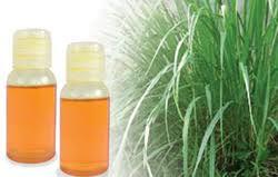 citronella oil in pune maharashtra citronella ka tel suppliers