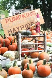 Hurricane Utah Pumpkin Patch by Fall At The Garden Patch Smith U0027s Grove Ky Busybeetraveler