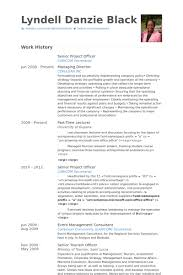 Senior Project Officer Resume Example