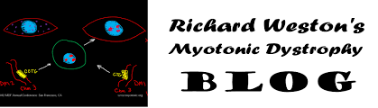 Christmas Tree Cataract Myotonic Dystrophy by Cataracts Richard Weston U0027s Myotonic Dystrophy Blog