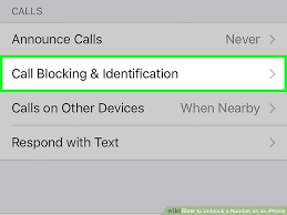 How to Unblock a Number on an iPhone 6 Steps with