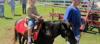 Pumpkin Patch Santa Rosa by Down On The Farm Agritourism Events In Santa Rosa County Milton