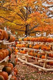 Hartsburg Pumpkin Festival 2015 Dates by Fall Planning Guide And Bucket List Autumn Buckets And Thanksgiving