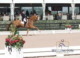 100 Wellington Equestrian Club Must Visit FL The Winter Capital