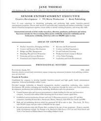 48 Best Executive Resume Templates Samples Images On
