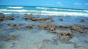 bathtub reef beach youtube