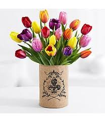 cheap tulips bulb find tulips bulb deals on line at alibaba
