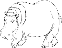 Free Hippo Coloring Pages Printable