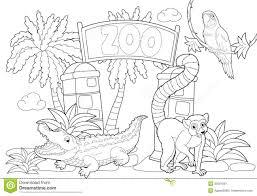 Dibujos Animados De Niños Para Colorear El Zoológico De Aves De