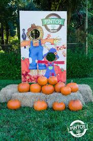 Redlands Fl Pumpkin Patch by Visit To Saint Thomas U2013 Pumpkin Patch 2014 U2013 Pinto U0027s Farm
