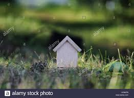 100 House In Nature Figure House In Nature Stock Photo 137544801 Alamy