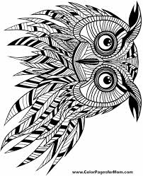 Free Printable Adult Coloring Pages Owl