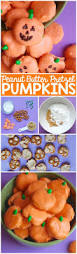 Motley Pumpkin Patch by 1132 Best I Halloween Images On Pinterest Halloween Recipe
