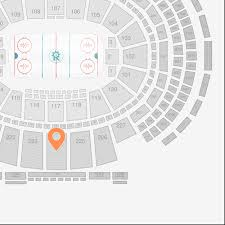 Madison Square Garden Section 224 Seat View