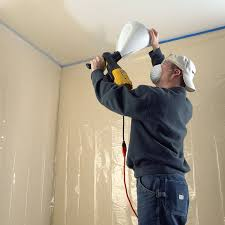 Using A Paint Sprayer For Ceilings by Wagner 0520000 Powertex Texture Sprayer Power Paint Sprayers