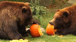 Halloween Things In Mn by Halloween Events For Kids In New York 2017 Axs