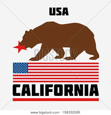 State Of California Flag USA Flat Vector Illustration