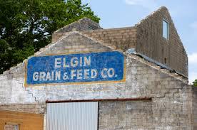 Elgin Christmas Tree Farm Elgin Tx by Elevation Of Elgin Tx Usa Maplogs