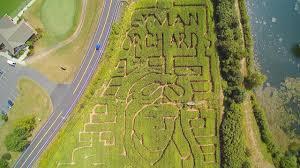 Pumpkin Picking Nj Corn Maze by Lyman Orchards Corn Maze Youtube