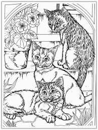Cat Coloring Pages Interest For Adults