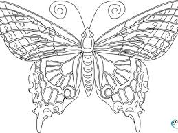 Free Butterfly Mandala Coloring Pages For